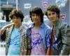 The Jonas Brothers Signed Photo By All 3!
