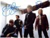Bon Jovi Band Uncommon Autographed Group Photo - Wow!