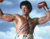 Sylvester Stallone 'Rocky' Awesome 10x8 Signed Photo!
