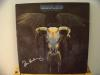 Don Henley 'The Eagles' Awesome Signed Album - Uncommon Signer!