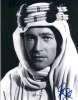 Peter O'Toole Very Uncommon 'Lawrence of Arabia' Signed Photo!