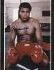 Muhammad Ali Super Closeup Autographed Photo - Nice!